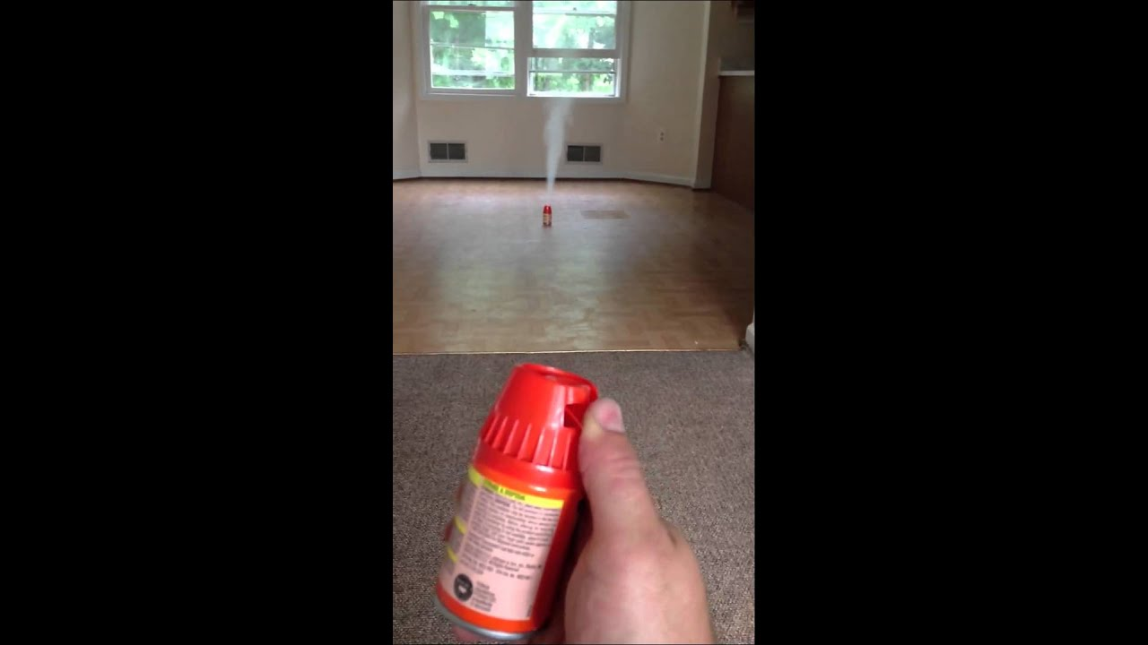 How to set Raid fogger to kill cockroaches exterminate Roaches ...