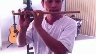 LÝ CHIỀU CHIỀU - Dân Ca Nam Bộ