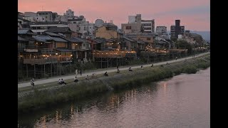 等間隔で夕涼み 京都・鴨川
