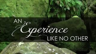 Bali Personalized Health and Wellness Retreats!