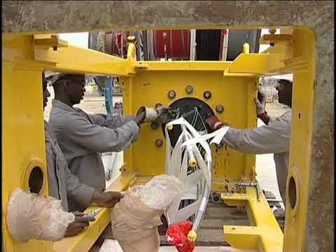 PROJECT FPSO  DALIA  NIGERIA OIL AND GAS