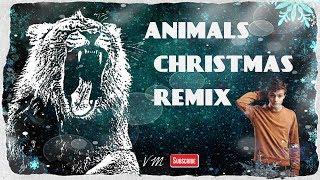 Animals Christmas Remix