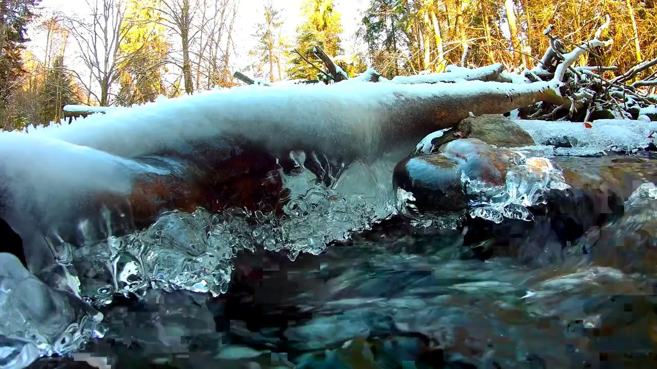 Calming Frozen Forest Stream. Relaxing Nature Sounds. (10 hours). White noise for sleeping.