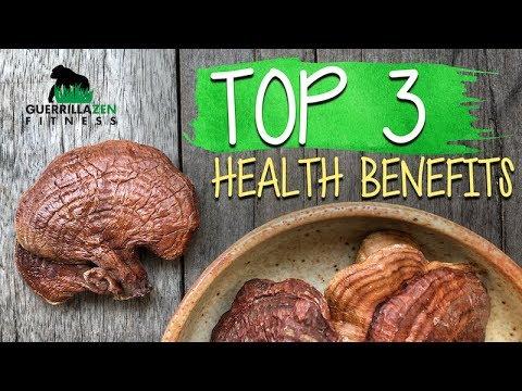 TOP 3 Health Benefits of Reishi Mushroom