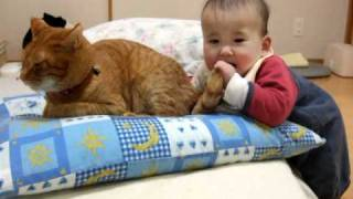 怒らない猫 ~ Baby bite cat's tail ~ thumbnail