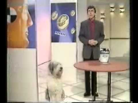 BBC Watchdog- (Incomplete) (1992)