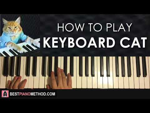 HOW TO PLAY – KEYBOARD CAT (Piano Tutorial Lesson)