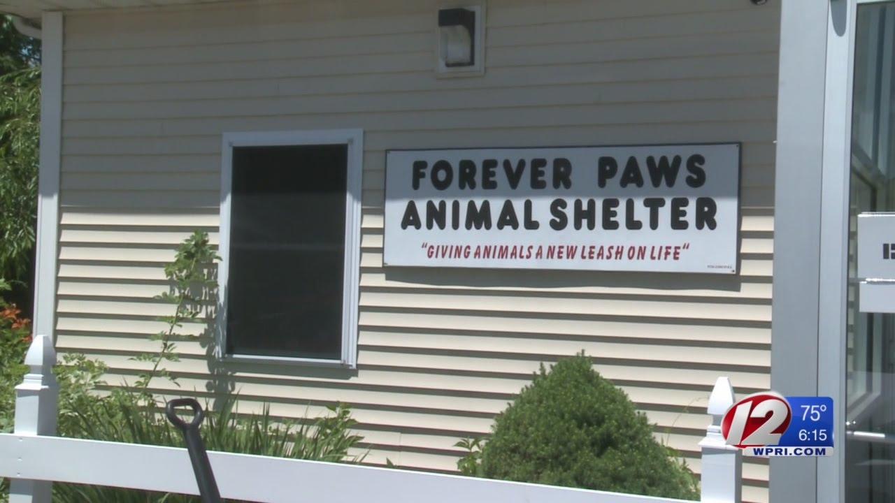 Fall River Has A New No-Kill Shelter
