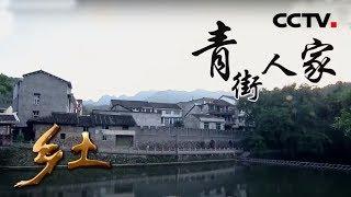 《乡土》 20190725 青街人家| CCTV农业