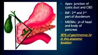 Zollinger Ellison Syndrome , GASTRINOMA , MEDICINE LECTURES , Gastrointestinal ,.