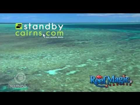 Cairns Tours - Reef Magic