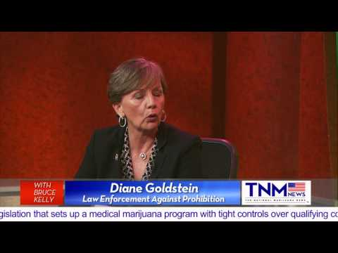Drug Lord Wack-A-Mole - Diane Goldstein's Interview w/ TNM News