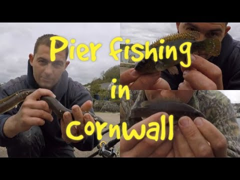 Pier Fishing - Shore Fishing In Cornwall