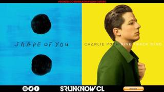 "Ed Sheeran vs. Charlie Puth ft. Selena Gomez - ""We Don"