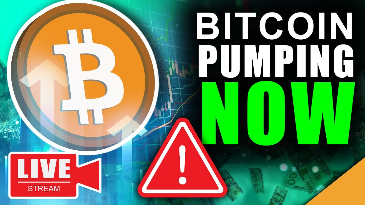 Huge Warning!!! Bitcoin Pumping to $40k RIGHT NOW (Live Bitcoin News)