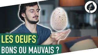 OEUFS : BONS ou MAUVAIS pour la santé ? Ce qu'il faut savoir...