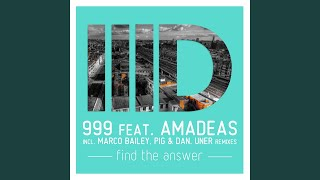 Find the Answer (Pig & Dan Remix)