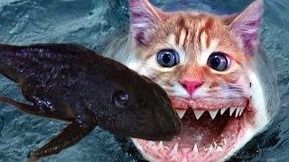 Рыбы-мутанты появились в реке Дон. Fish-mutant(, 2013-06-30T02:47:48.000Z)