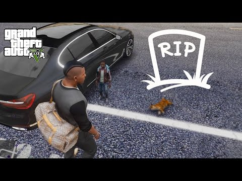 GTA 5 REAL LIFE MOD#47-BUYING A PET GONE WRONG :(