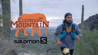 Elephant Mountain   A Cave Creek Trail Running Gem