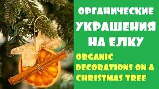 Органические украшения на елку. Organic decorations on Christmas tree(Спасибо за подписку ♥ Смотрите другие наши видео ♥ Органические украшения на елку. Organic decorations on Christmas..., 2015-12-15T21:23:32.000Z)