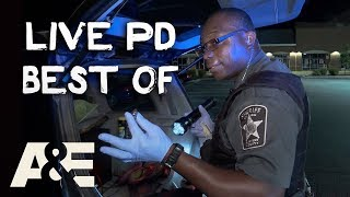 Big Dumb/Funny Live PD Moments