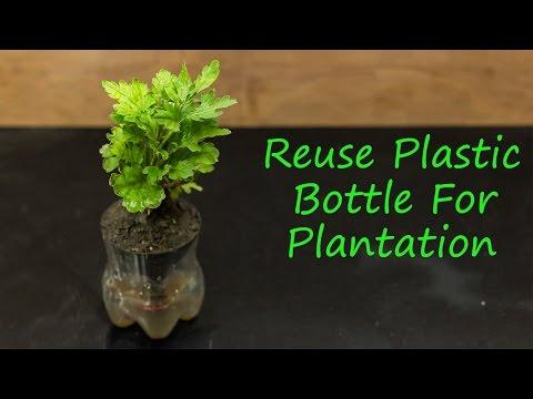 Reuse plastic bottle for plantation