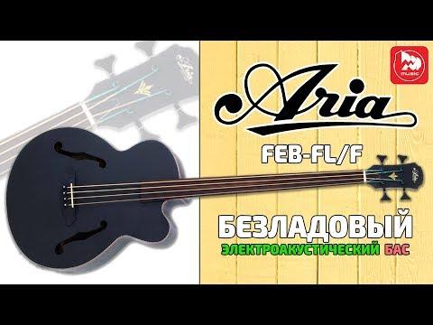 Безладовая акустическая бас-гитара ARIA FEB-FL/F music
