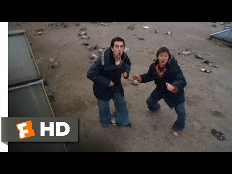 24 Hour Party People (2002) - Poisoning Pigeons Scene (5/12) | Movieclips