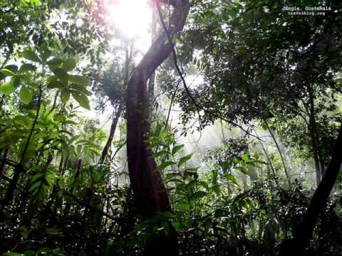 French Guiana (South America)