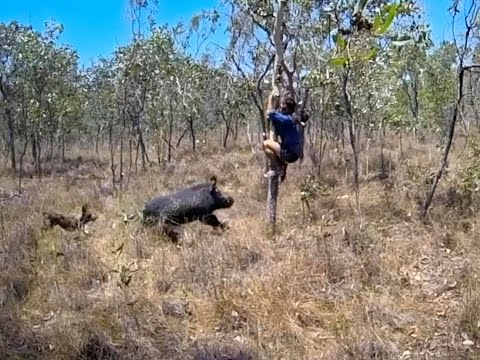 HUNTING AND FISHING Episode 1: Australian Boar Hunting And How To Shoot A Rifle In