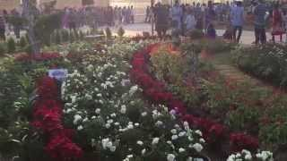 Flower Show 2015 - Ahmedabad River Front (part 6)