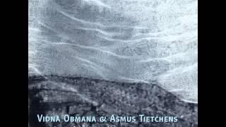 Vidna Obmana & Asmus Tietchens - vot 4