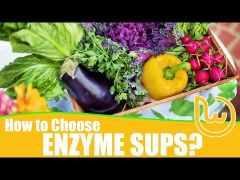 How To Choose Enzyme Supplements?
