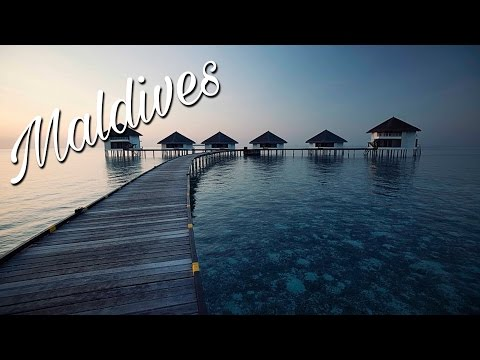 THE MALDIVES | FLYING THE NEST
