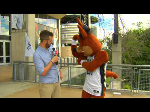 An Interview with the San Antonio Coyote