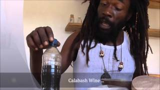 CALABASH WINE Exploring A Taste of Our Culture
