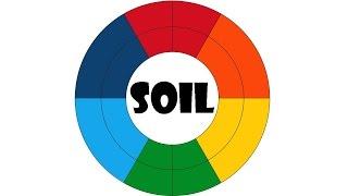Какого цвета бывает почва?