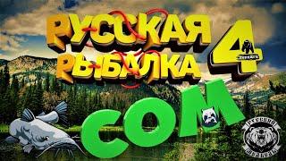 Русская Рыбалка 4 Новая точка 38 102 Ахтуба на Сома Прикольная