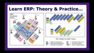 Introduction to Enterprise Resource Planning Systems - ERPS U23849
