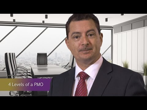 Project Management Office - The Four Levels of a PMO