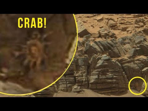 5 Strangest & Mysterious Things Caught By NASA On Mars!