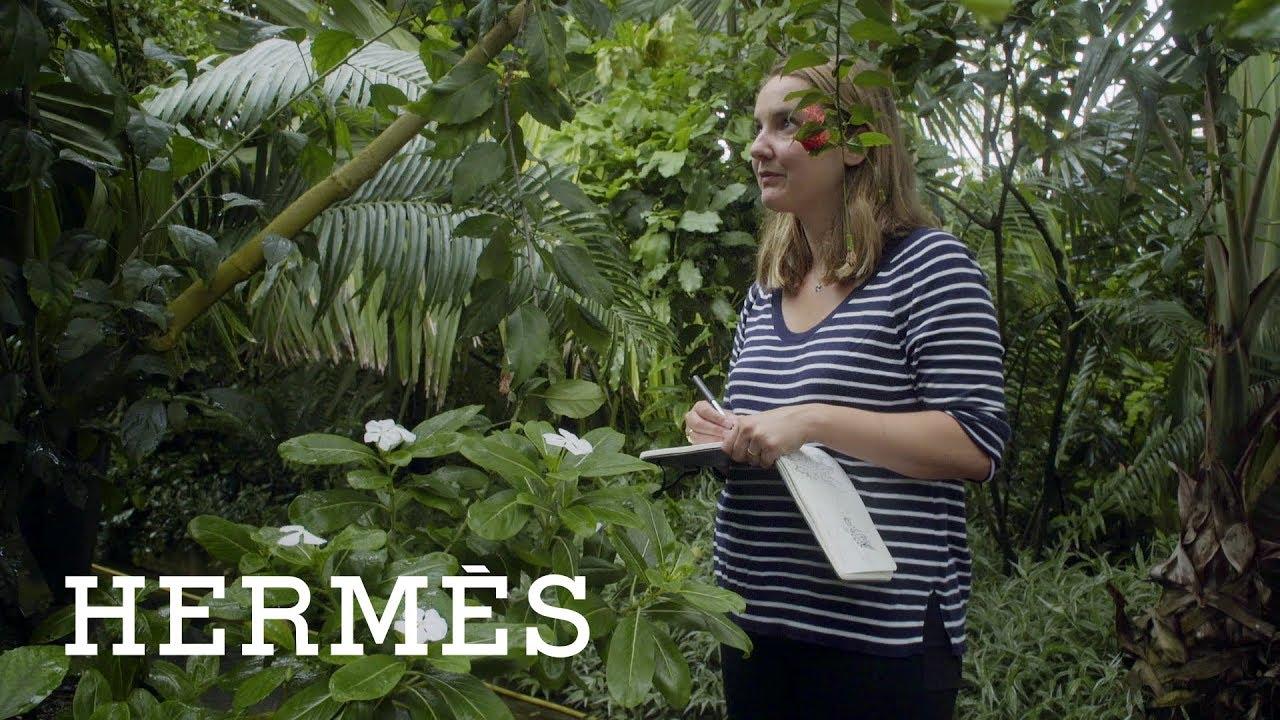 A Hermes a Hermes lakhatási lehetőséget érinti