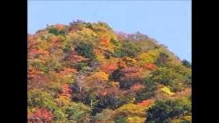 梅ヶ島別荘地周辺の山々の紅葉をご覧ください.