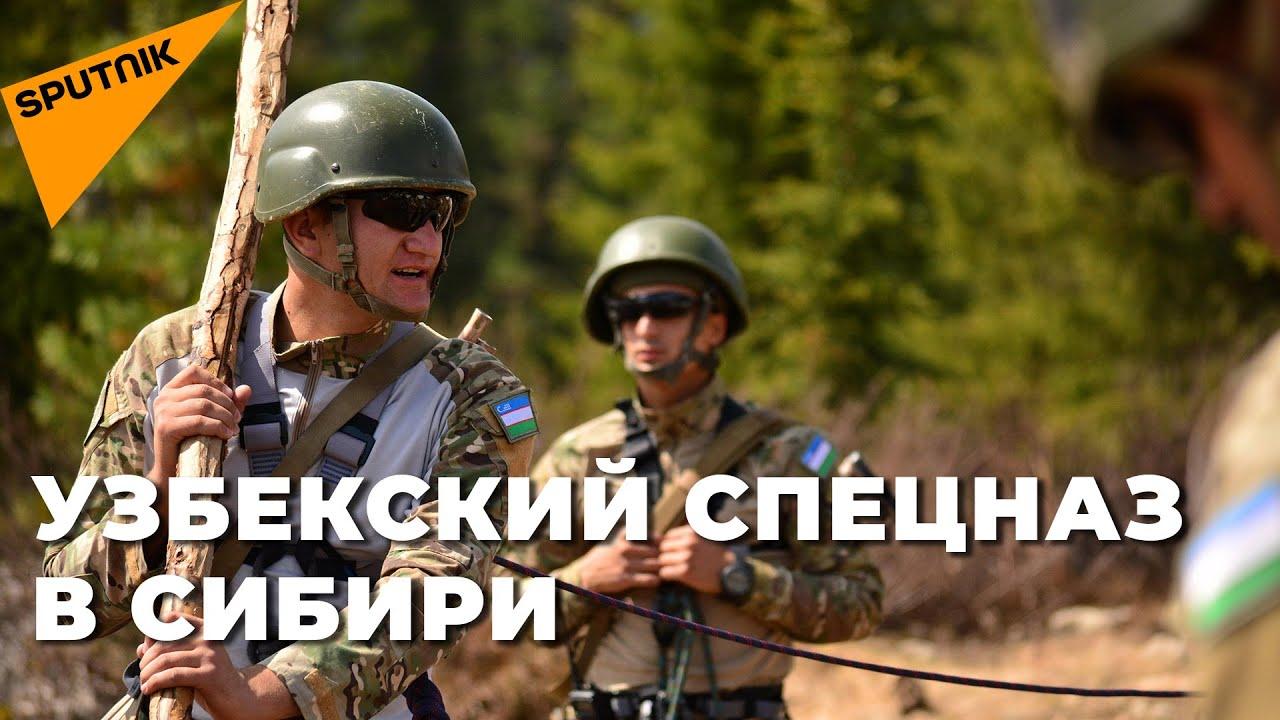 Спецназ Узбекистана забросили в Сибирь