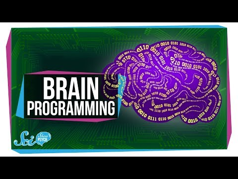 Did We Just Figure Out How to Program a Brain?