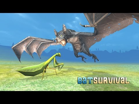 Bat Simulator 3D- By Wild Foot Games- Action - Google Play(Super HD Quality)