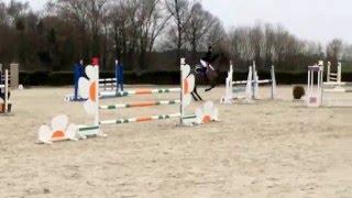 Noralys du Bosdel & Léa Weber, amateur 2 vitesse 20/03/16 12 eme Boissy le Châtel