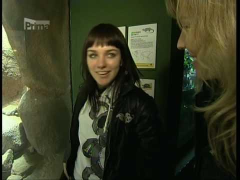 Ewa Farna - Interview (Top Star Magazin 31.12.2008)
