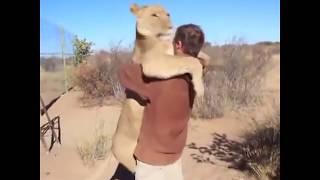 Дружба животных и людей.
